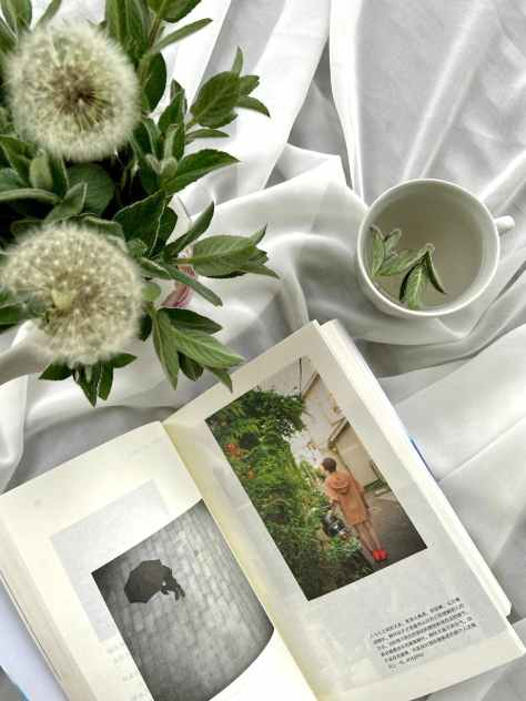 opened book on white cloth near dandelion flowers
