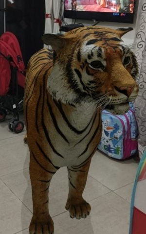Google 3D animal in Home