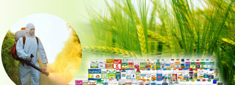 India Pesticides Limited IPO price band, GMP, Allotment, listing date and listing price