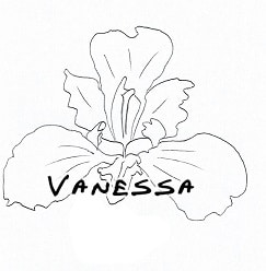 signature vanessa onlybrightness - Note to myself