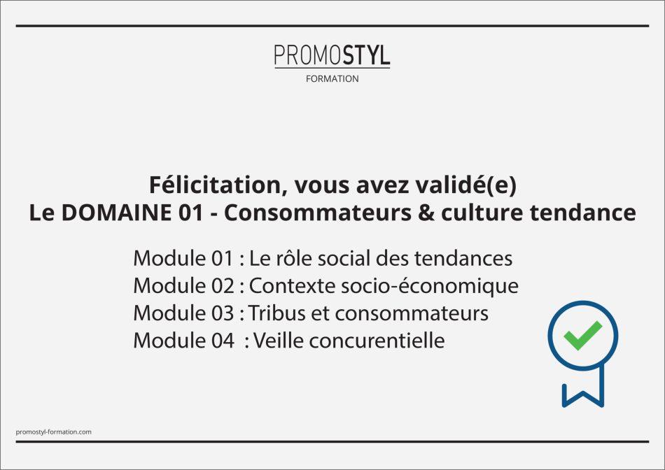 Certificat expertise scaled - Devenir Tendanceur : Un Métier d'Avenir