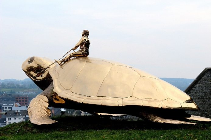 tortue Namur - only laurie