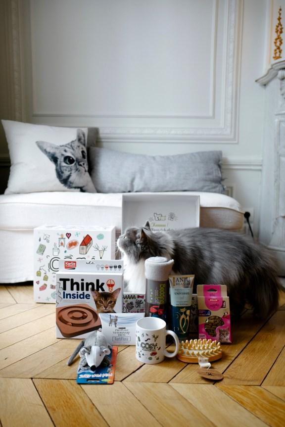box-chat-produits