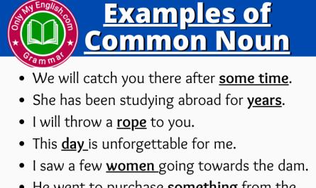 examples of common noun