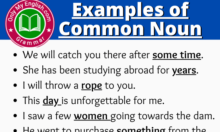 Examples of Common Noun are in Sentences