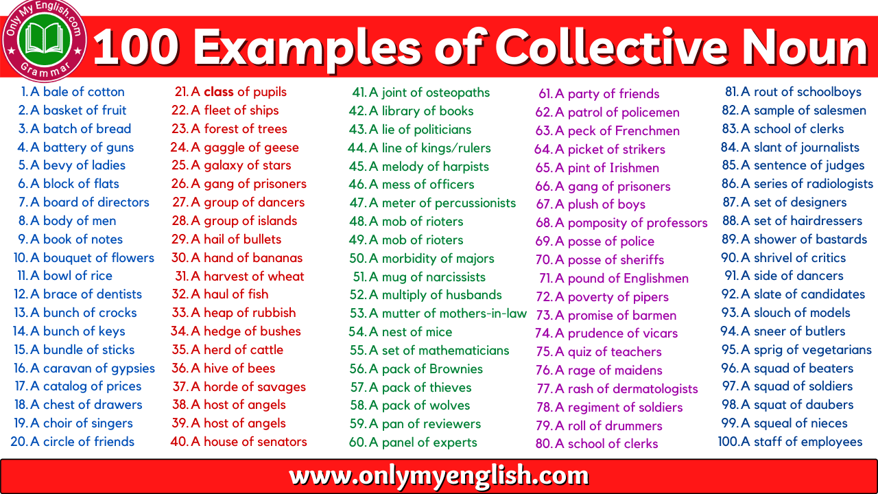 génial  Mot-Clé Lists of Collective Nouns of People, Animal & Things » OnlyMyEnglish