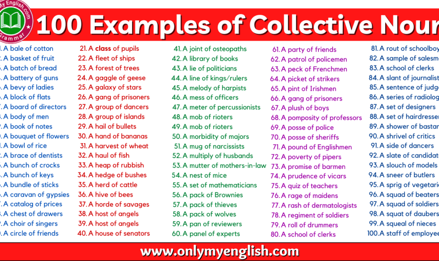 Lists of Collective Nouns of People, Animal, Things, and objects: