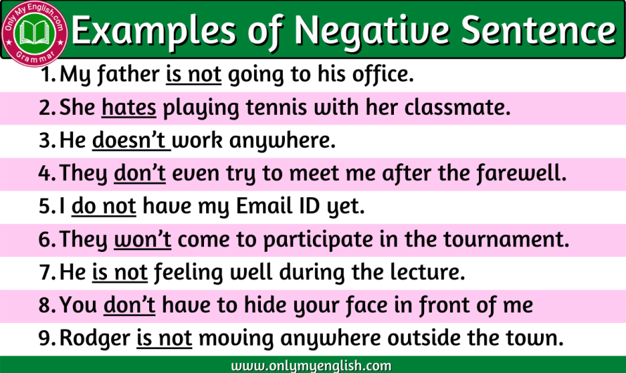 Negative Sentences Examples in English