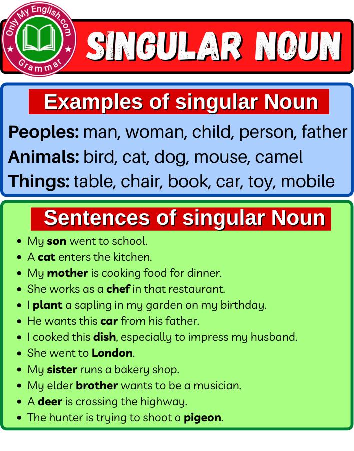 singular noun definition examples
