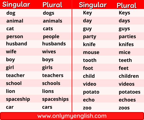 Comparison between Singular and plural nouns: