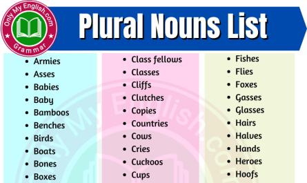 plural noun list