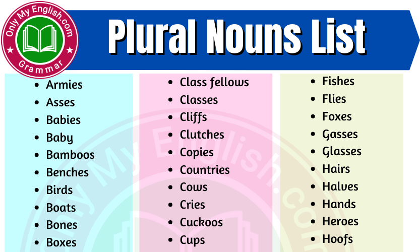 Plural Noun List in English