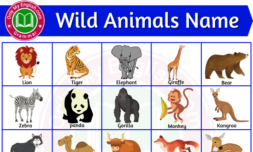 Wild Animals Name List with Pictures in English