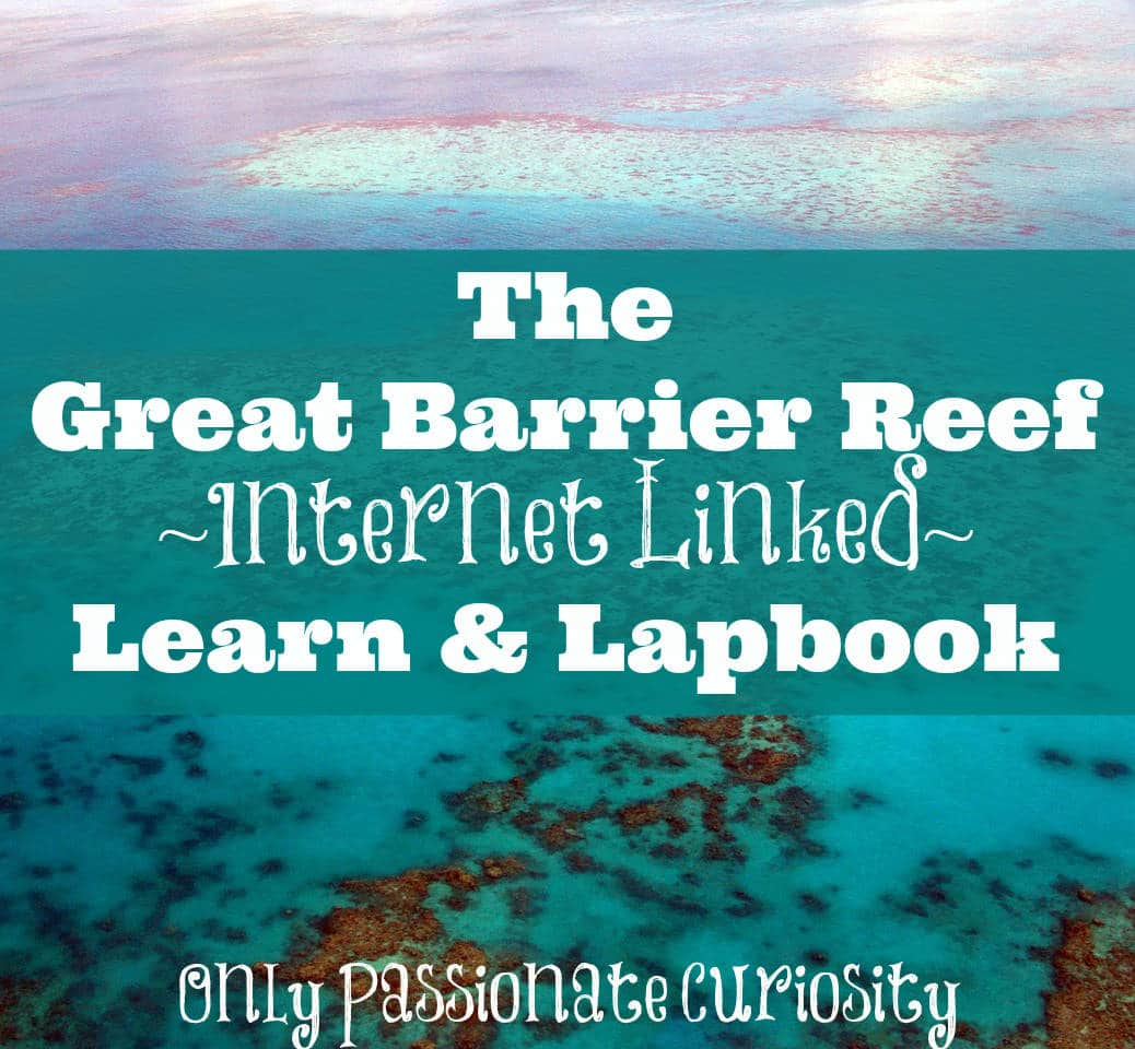 The Great Barrier Reef Learn And Lapbook Printable