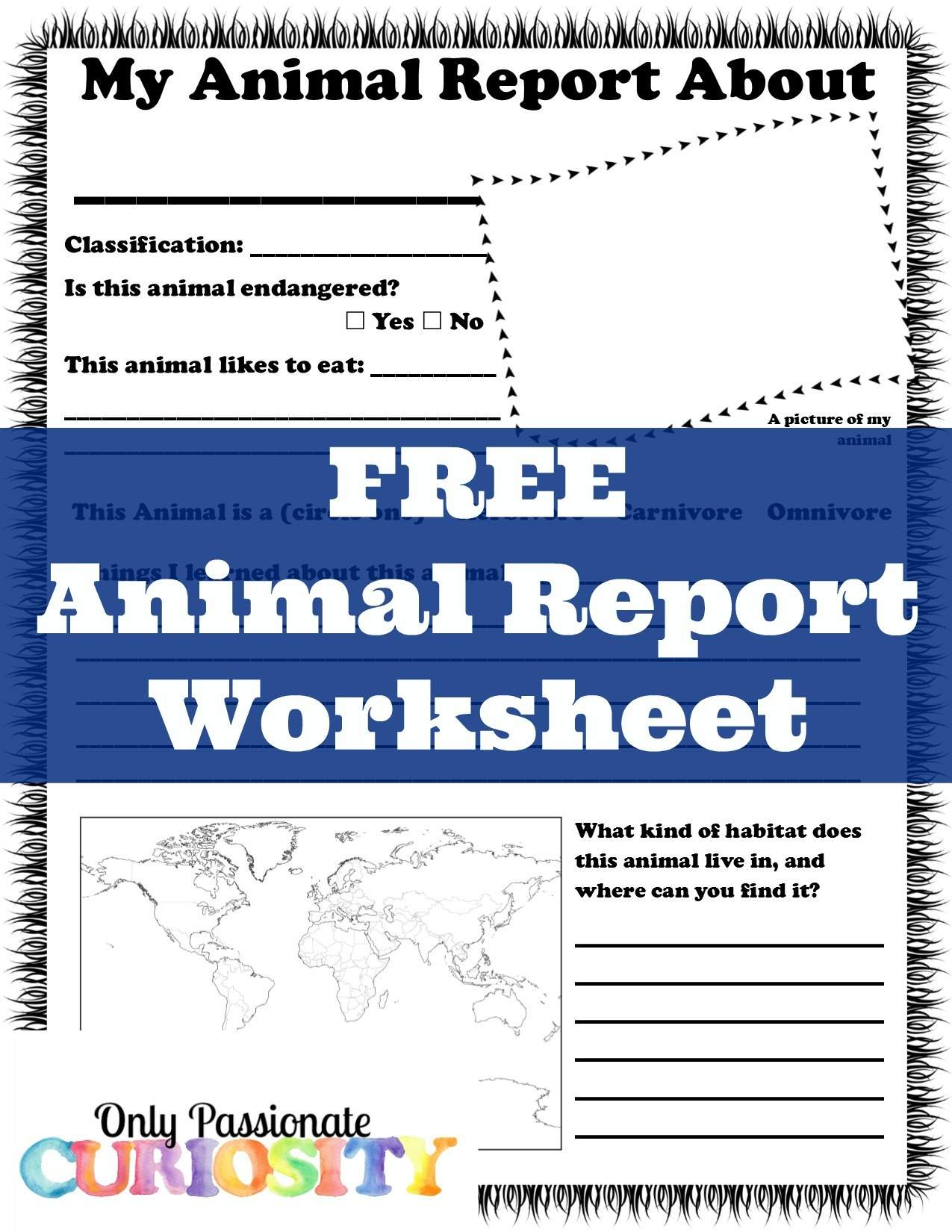 Animal Report Worksheet Only Passionate Curiosity