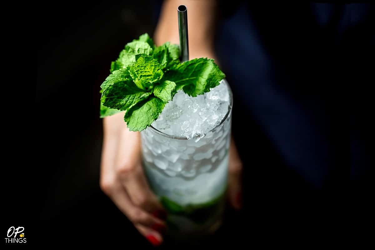 How to Make the Perfect Mojito Cocktail, also know 5 Best Rum for a Mojito Cocktail!