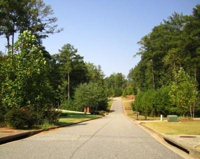 Aaronwood Alpharetta Cherokee County Subdivision Of Homes (22)