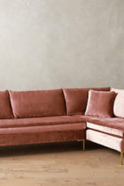 rose couch