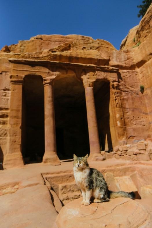 Visiter Petra