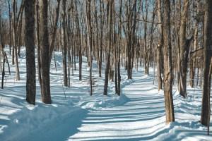 Sentier de la sucrerie à Chelsea dans le parc Gatineau au Québec en hiver