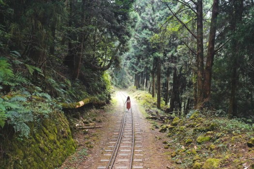 rails abandonnés Taïwan alishan blog