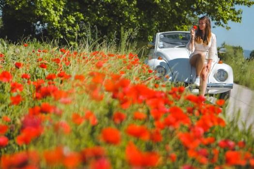 road trip en Provence champs de coquelicots blog