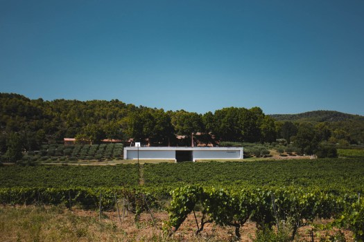 chateau thuerry à Villecroze vin