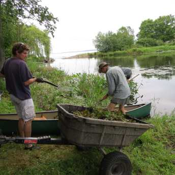 George Spak and Tim Johnston unloading water chestnut plants.