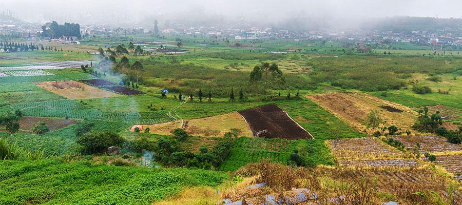 plateau de Dieng