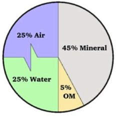 This pie is what makes up the ideal soil: half solid, half pore space. The pore space is evenly mixed between air and water.