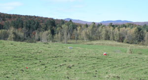 The keyline-plowed pasture is ready for sampling.