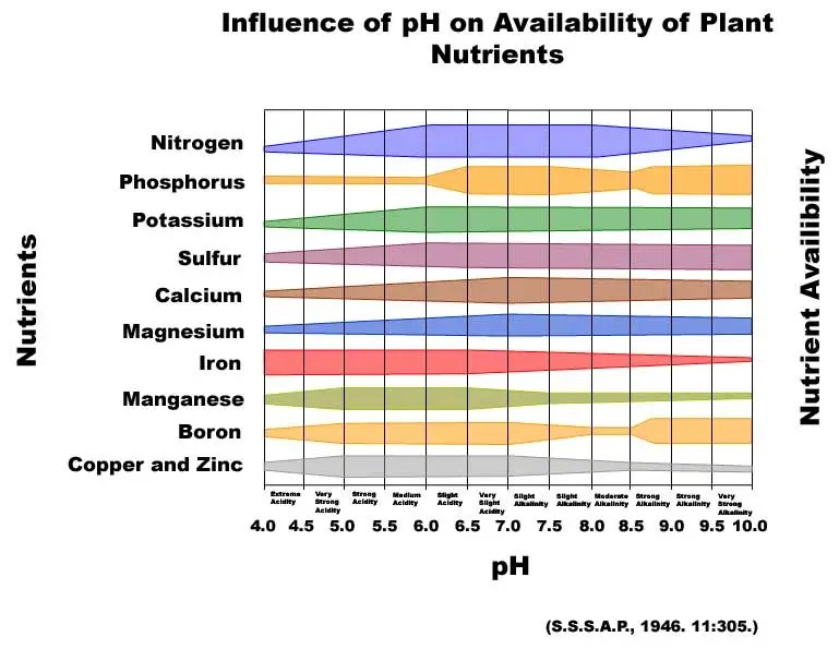 What s soil ph and why do i care on pasture for Importance of soil minerals