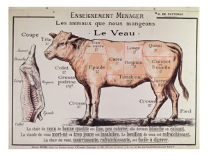 French School Veal Diagram