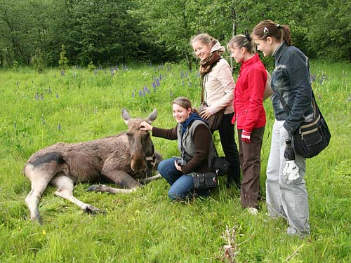 Kostroma Farm visitors with a Milk Moose.