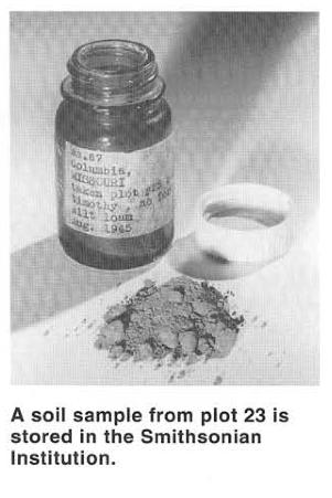 Soil sample from Plot 23