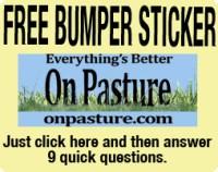 FreeBumperSticker