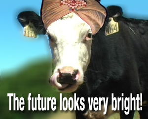 MindReadingCow