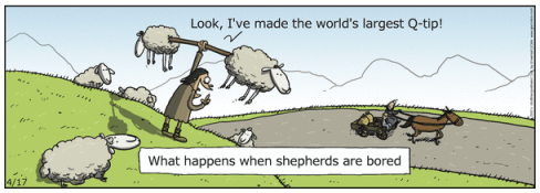 Bored Shepherds
