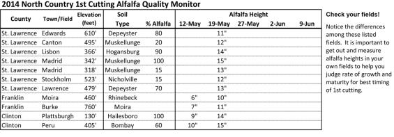 North New York Alfalfa heights