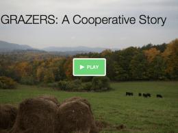 Grazers Cooperative