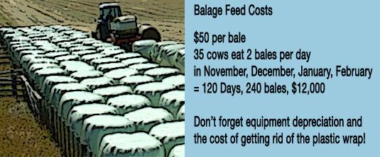 BalageFeedCosts