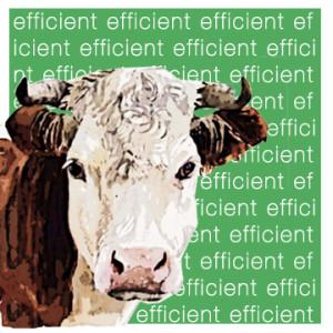 EfficientCow