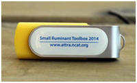Order your jump drive with the whole Toolbox on it via Paypal by clicking here.