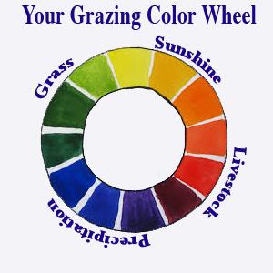 Grazing ColorWheel