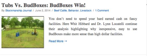 BudBoxes Best