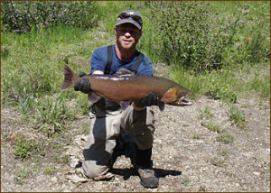 Biologist Mark Hereford (don't you just love his last name?) with Lahontan cutthroat trout prior to being released upstream. Photo courtesy of USGS.