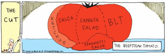 Beefsteak Tomato Slicing Diagram