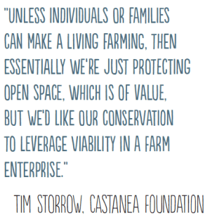 Tim Storrow Castanea Foundation quote