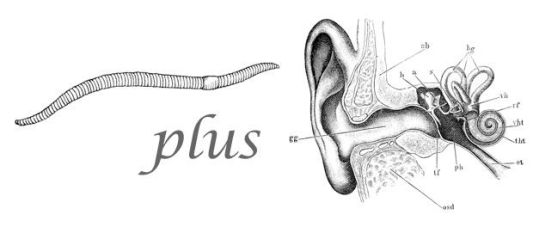 Worm plus ear (public domain, via wikimedia commons)