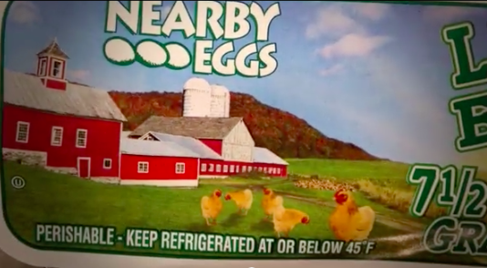 How hens look on a Costco egg carton.